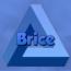 BriceChk
